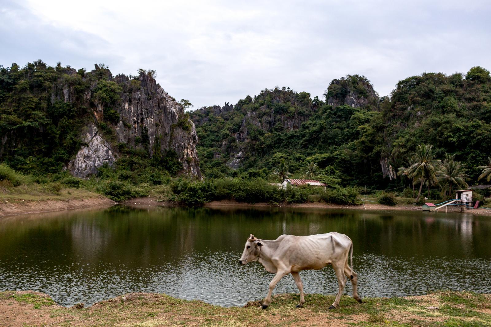 Photography image - Loading 001_Limestones-Cambodia.jpg