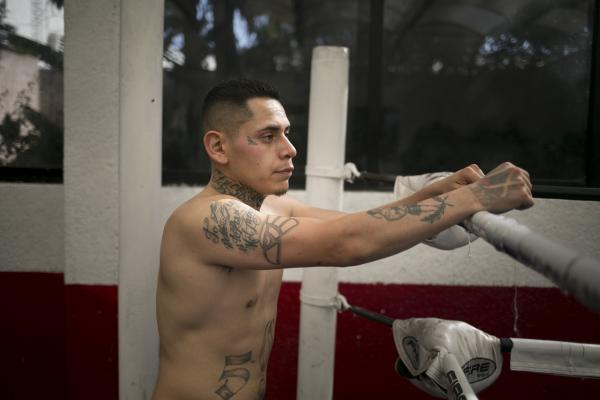 Peleadores: Fighting for Redemption at Mexico's Boxing Mecca