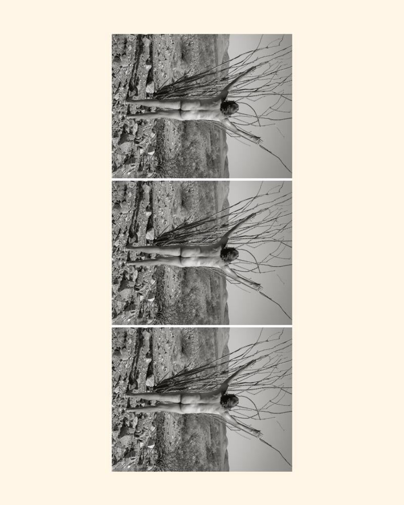 Photography image - Loading 3xocotilloverticalmat-2.jpg