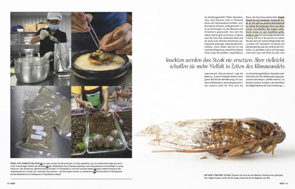 Client:  BEEF! Magazine  - Germany  Published: September 2019