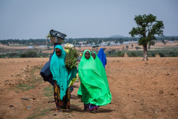 A group of young women stroll past a farm in Wuciciri community in Zaria, Kaduna.