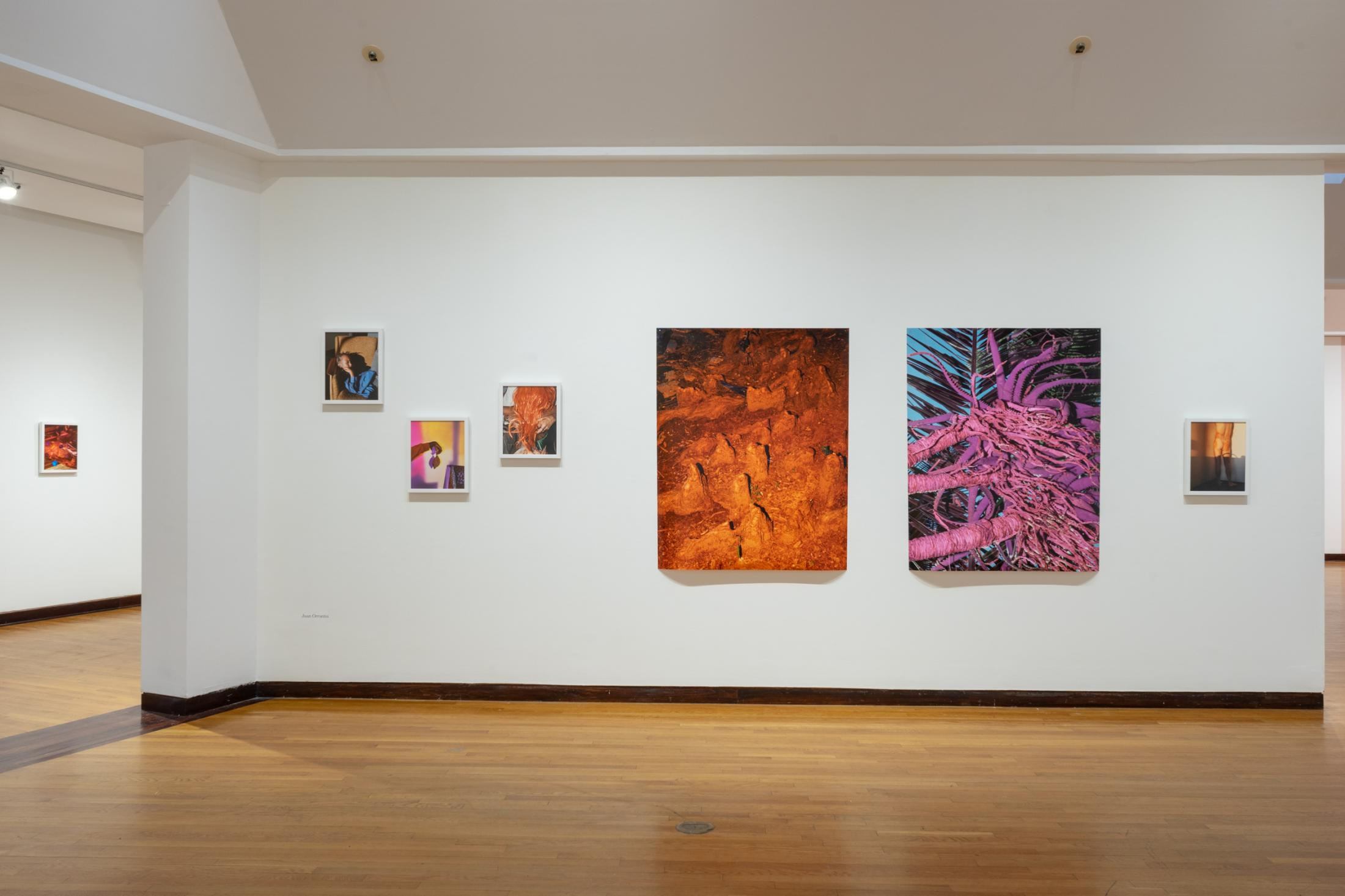 Like stains of red dirt. (Joseloff Gallery, Hartford, Ct, Mfa show)