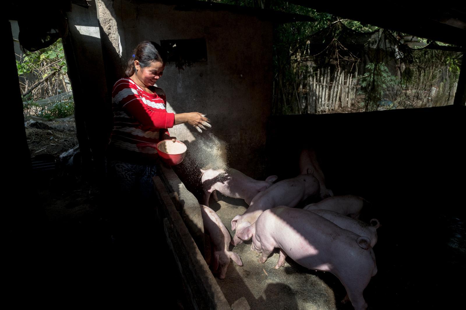 Photography image - Loading 001_Portfolio-Food-NGO-Omar-Havana.jpg