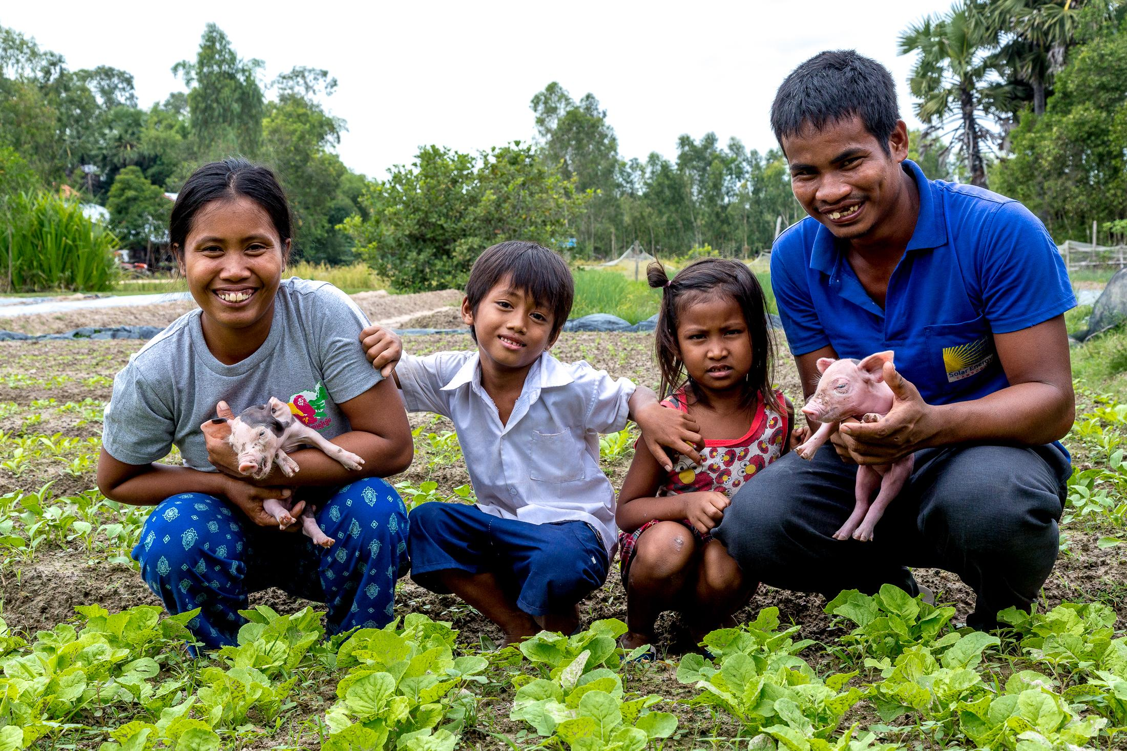 SVAY THOM, CAMBODIA - DECEMBER 05: Ou Kongkea (29) (left) and her husband Loek Bunthoeun (28) (right) pose for a photo holding piglets with their children, Vat Somavotey (5) (left) and Vat Samady (7) (right), in a vegetable farm planted outside their home on December 05, 2015 in Svay Thom, Cambodia. Photo: © Omar Havana for Heifer International