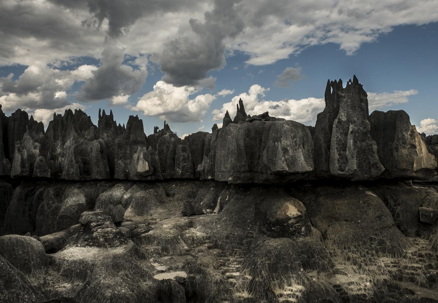 Tsingy de Bemaraha National Park. Madagascar