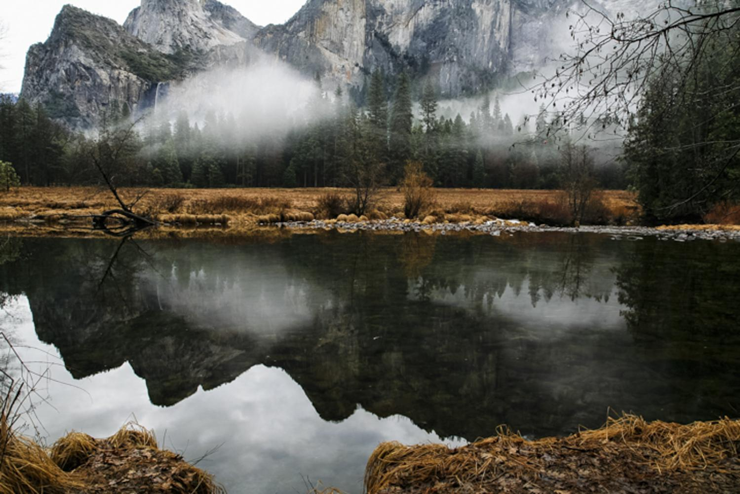 Fog settles in the Valley of Yosemite National Park.