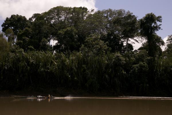 La carretera que corta el corazón de la Amazonía