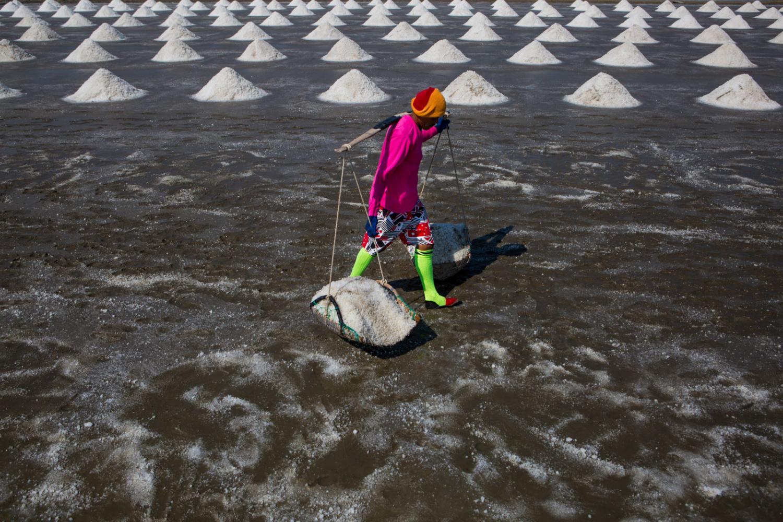 Thailand's salt harvest