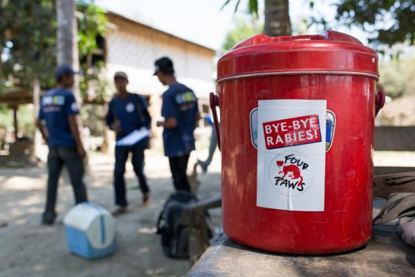 Four Paws Rabies Campaign in Myanmar