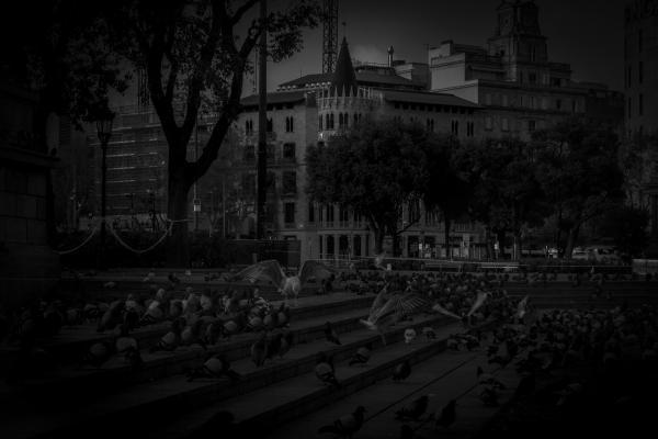 Covid-19 Barcelona