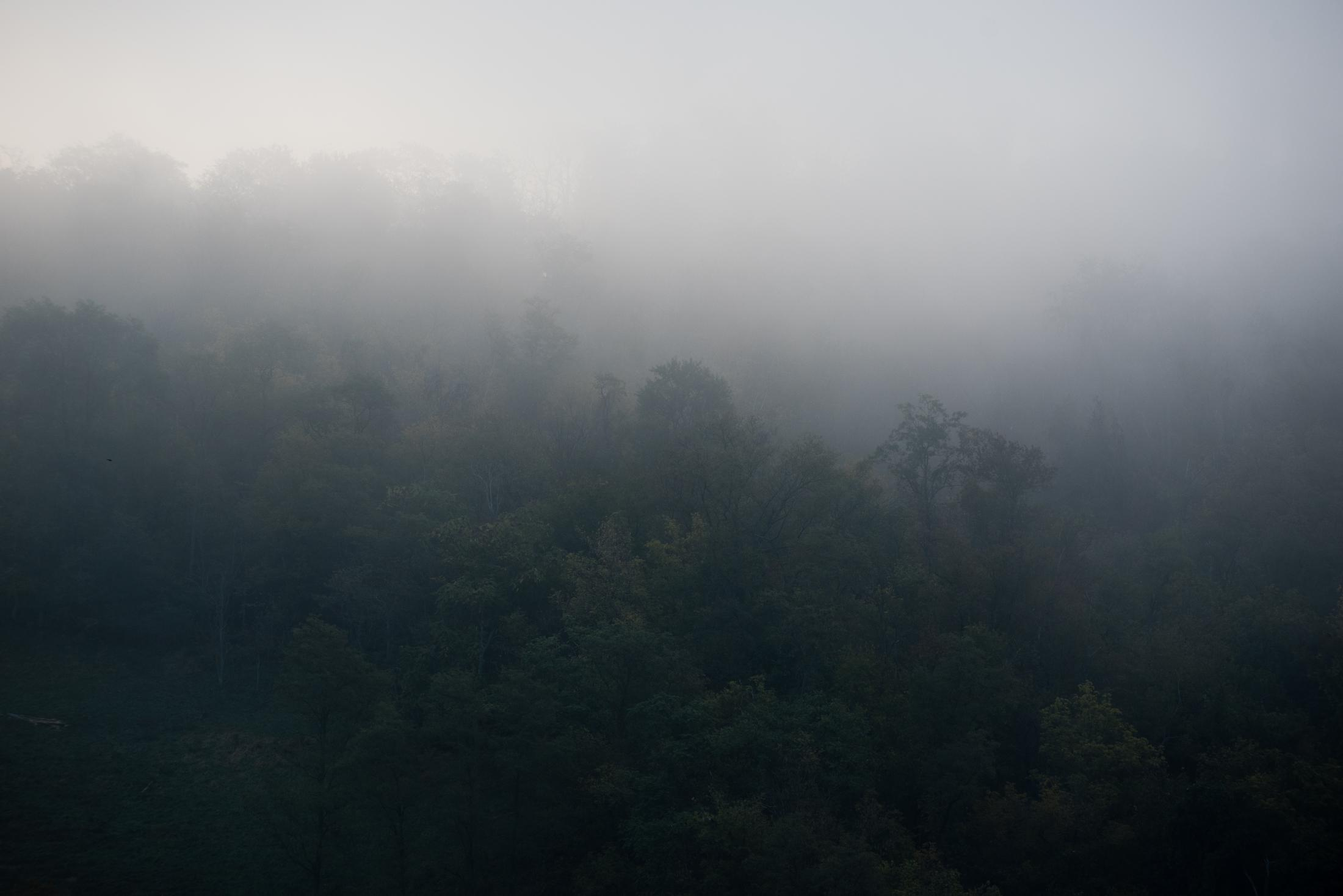 The fog-wreathed hills of the unglaciated Allegheny Plateau surround the city of Wheeling, West Virginia. The state's terrain once proved to be a formidable obstacle but ingenuity and grit eventually brought the National Road and B&O Railroad across the hills in 1818 and 1853, respectively. This, combined with the construction of the first bridge to cross the Ohio River, made Wheeling a transportation hub for westward expansion.