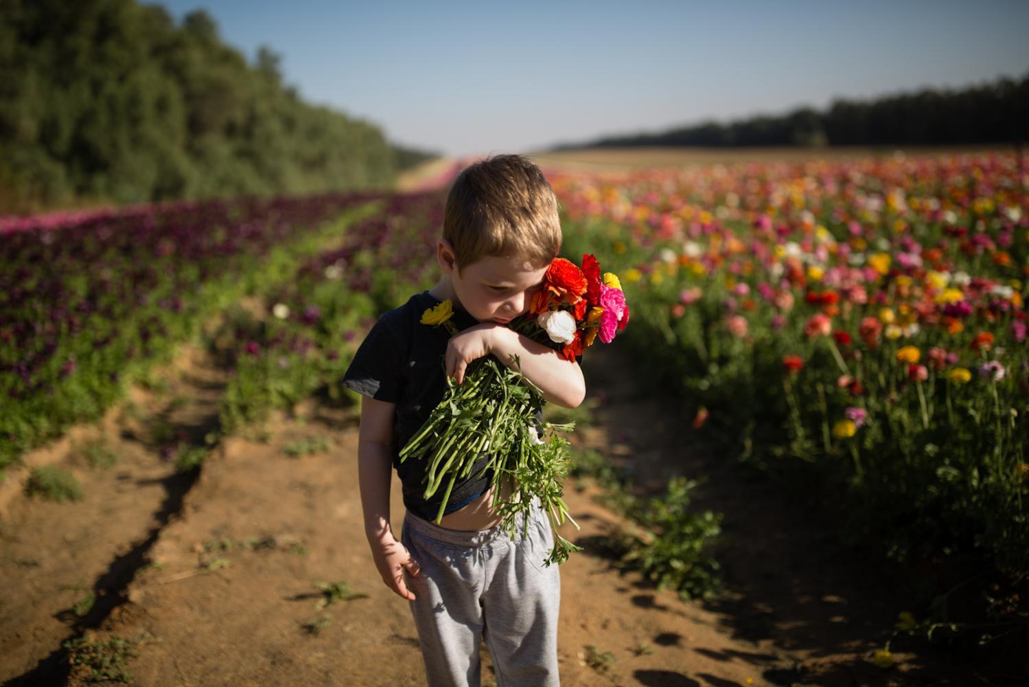 Photography image - Loading 6d156858d350f113-CK_Gaza_Border_36.jpg