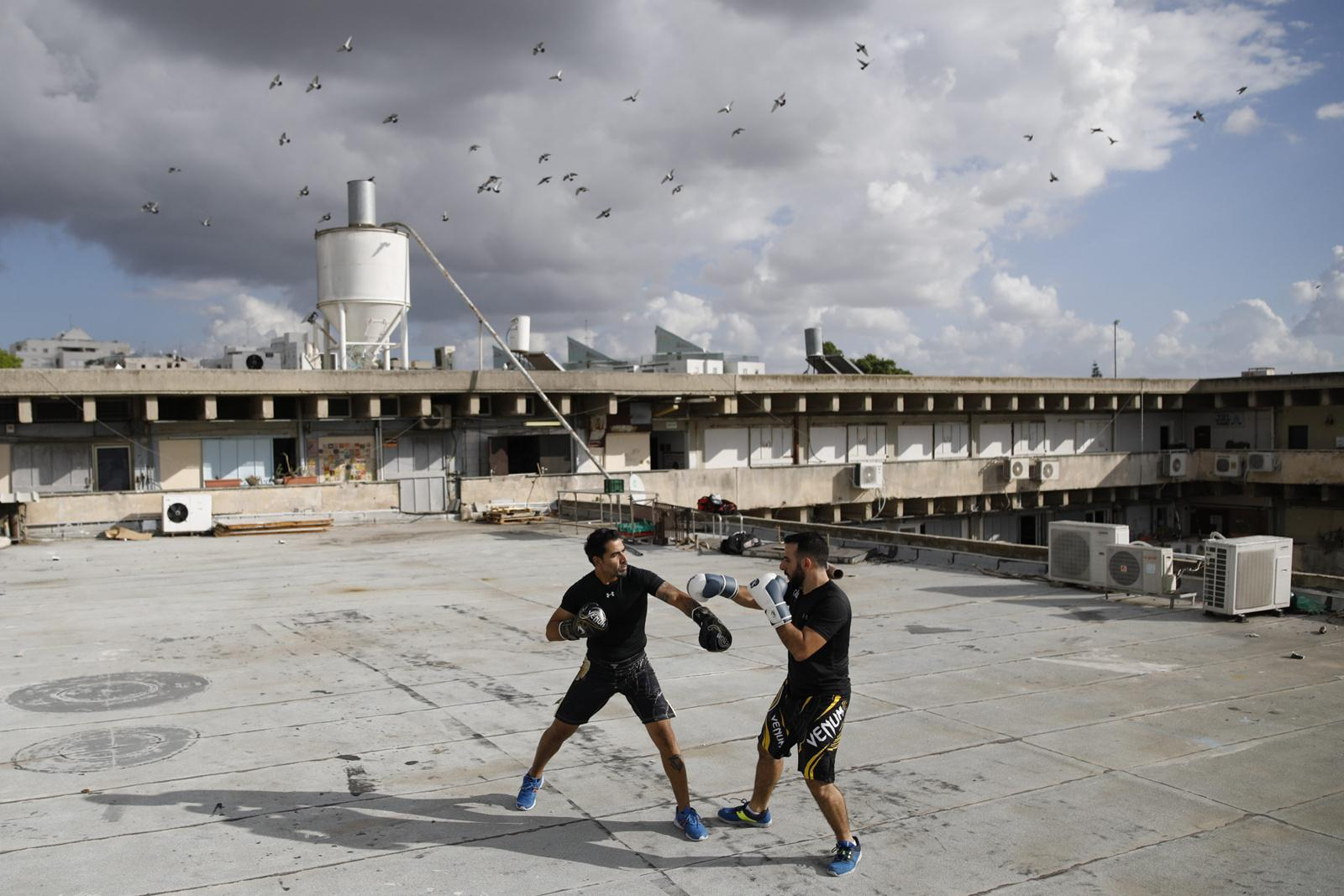 Krav Maga instructors Doron Turgeman (L ), 35, and Michael Alimelech (R ), 26, spar with each other as part of their Krav Maga training, on the rooftop of the building in which they give courses, in the city of Givatayim, just East of Tel Aviv, November 29, 2017, Israel.