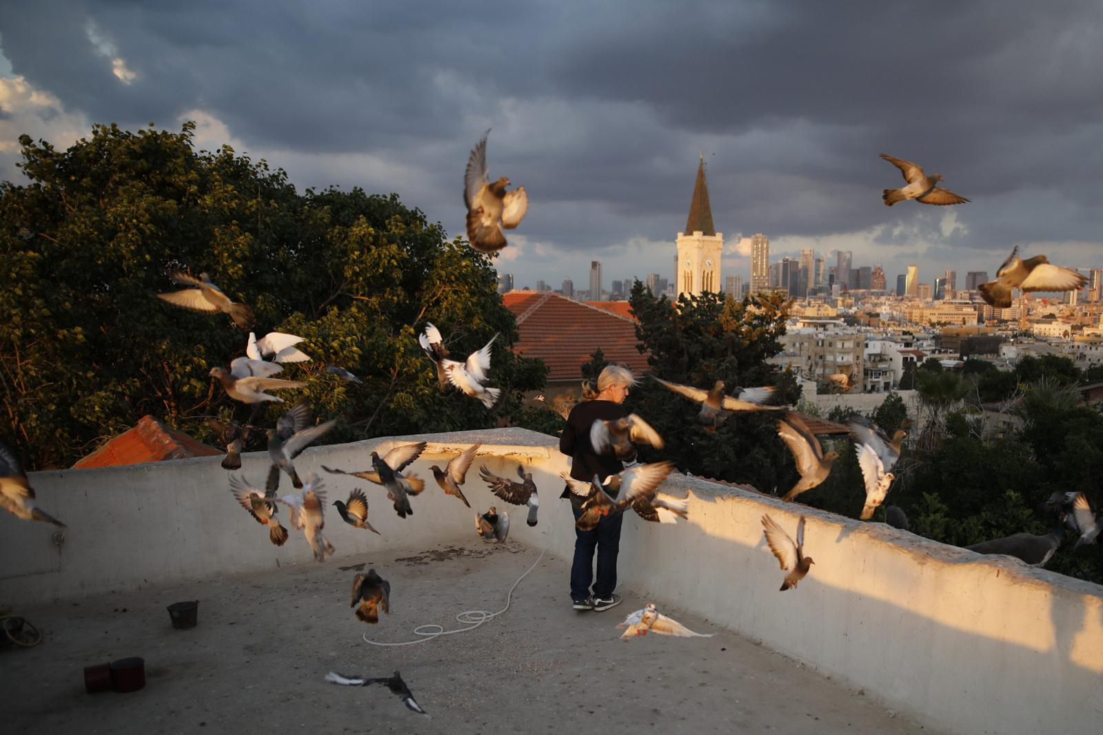 A woman feeds birds on her rooftop, which is her daily sunset ritual, November 20, 2017, in Yafo, Tel Aviv, Israel.