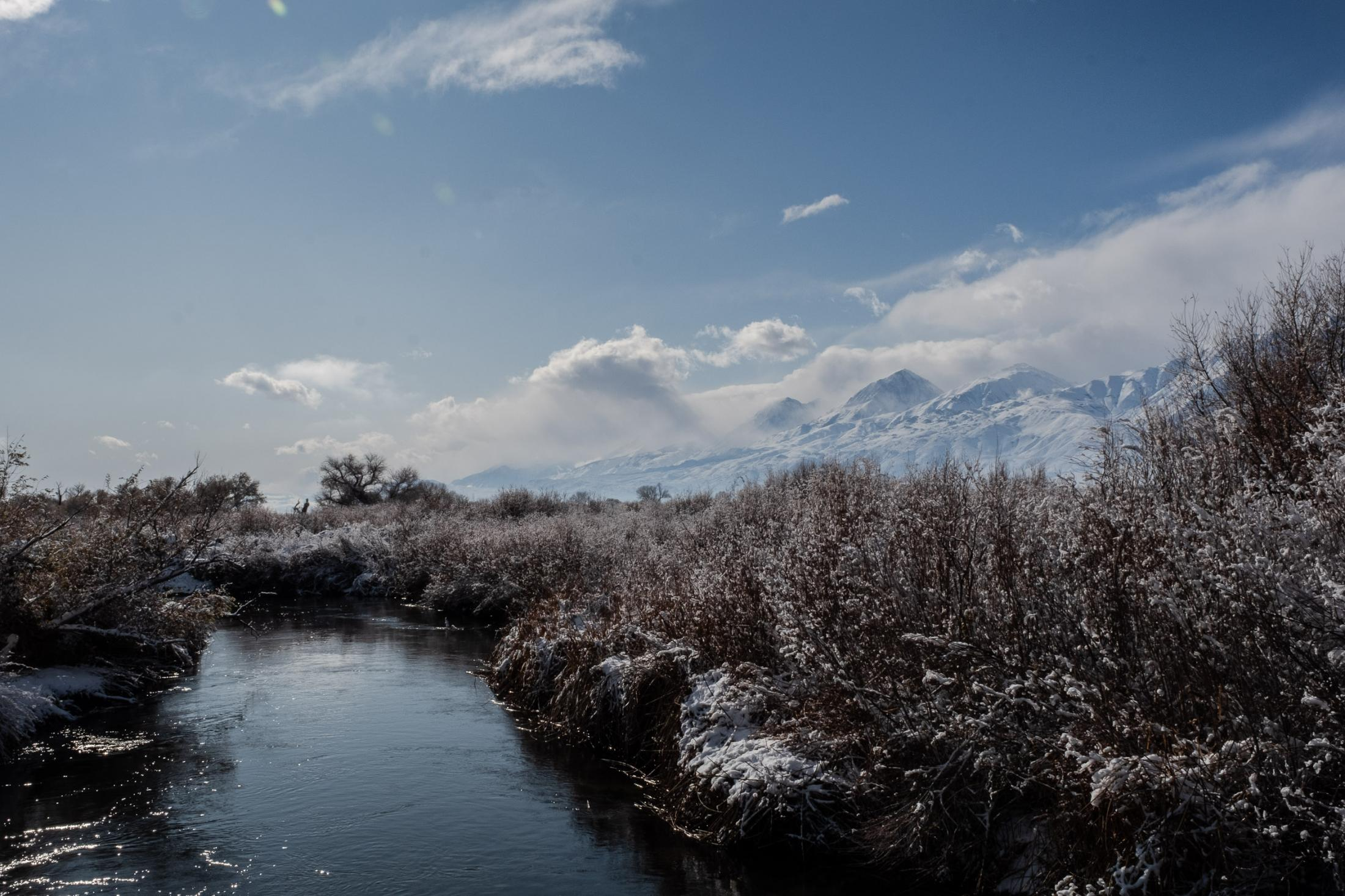 4, Owens river with the Eastern Sierras in the background Nov 2019