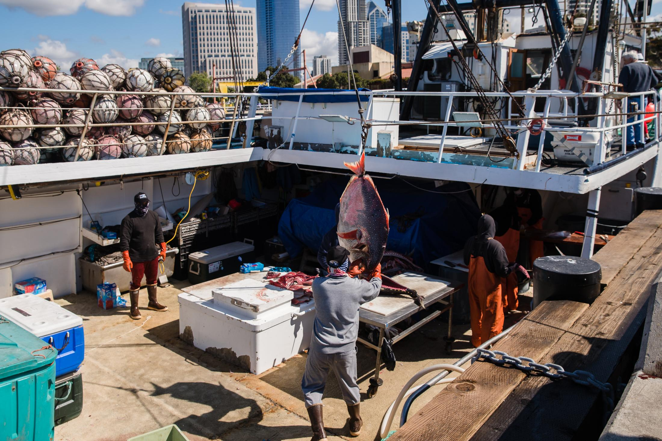 A fisherman gets ready to cut fish on the Pacific Horizon fishing Boat (owned by the Haworth family) at the Tuna Harbor Dockside Market on April 11, 2020 in San Diego, California. Fisherman have had to regroup due to Covid-19. Since local restaurants have been shut down and not every establishment is doing take-out or deliveries, they have to had to lower their cost for the locals who have been purchasing their fish.