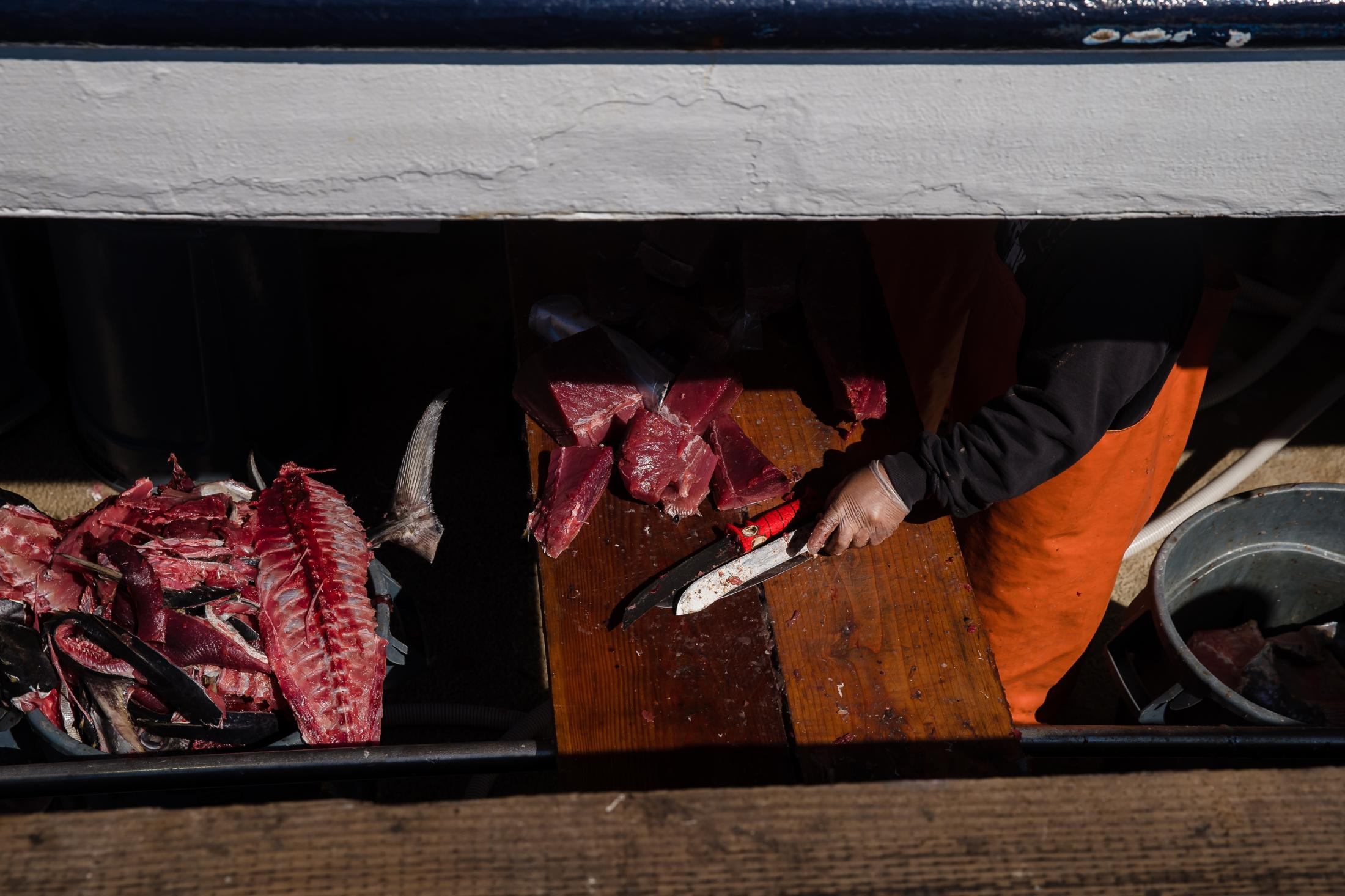 A fisherman cuts fish on the Pacific Horizon fishing Boat, (owned by the Haworth family) at the Tuna Harbor Dockside Market on April 11, 2020 in San Diego, California. Fisherman have had to regroup to stay afloat due to Covid-19. Since local restaurants have been shut down and not every establishment is doing take-out or deliveries, they have to had to lower their cost for the locals who have been purchasing their fish.
