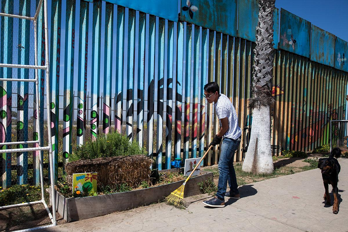 Part of the binational garden with native plants is maintained on both sides of the border fence between Tijuana, Mexico and United States. A voluteer tends to the garden on the Mexican side.
