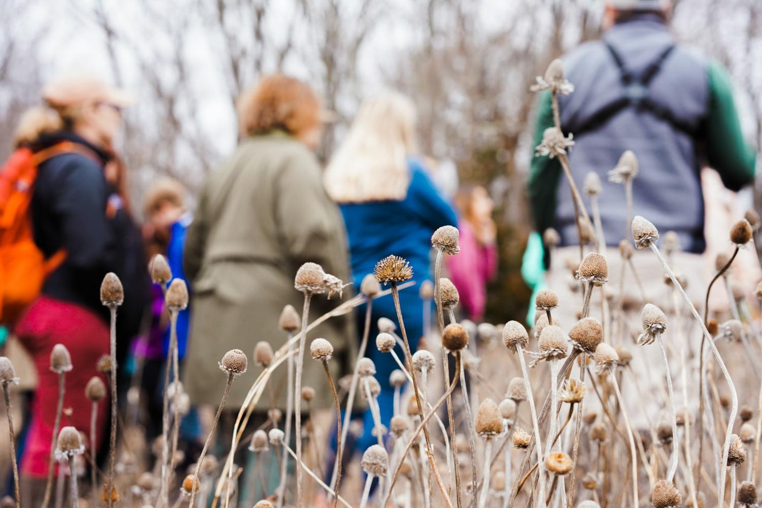 Teachers and members of the VAEE listen attentively as Mike Hayslett teaches them about vernal pools and the importance of wetlands. At Sweet Briar College, 2020.
