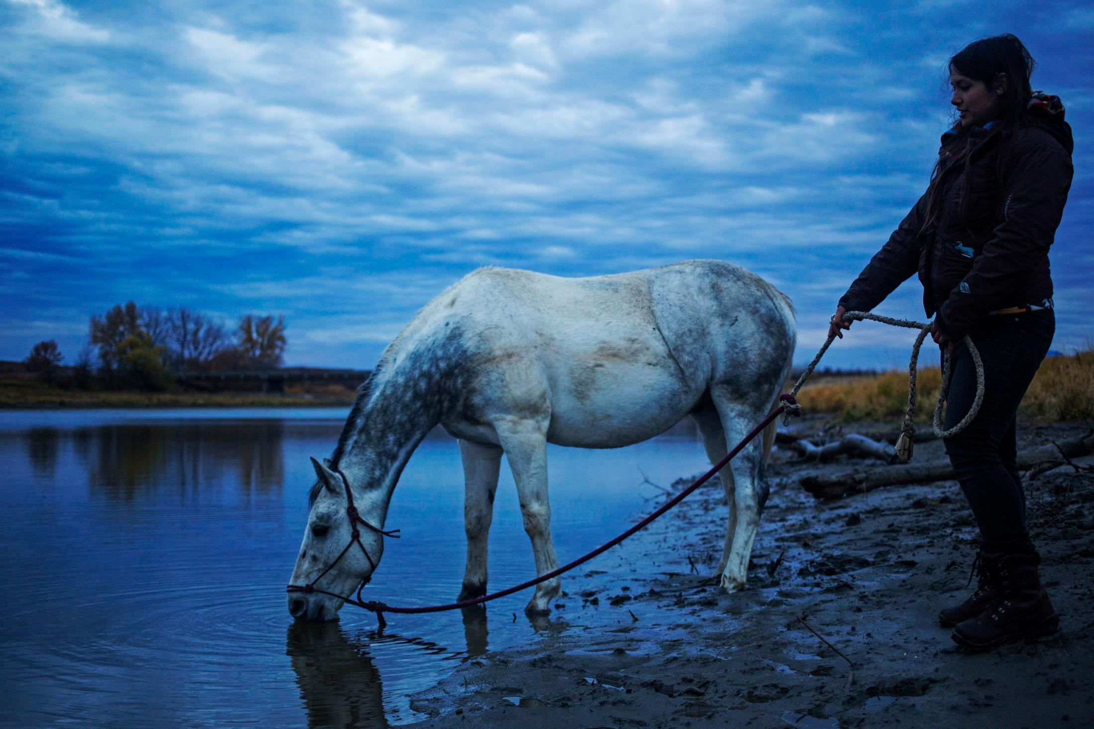 Jerica Meditz brings her new horse, Shota, to a stream so that he can have a drink of water at the Sacred Stone Camp in Cannon Ball, North Dakota. Jerica received the horse from the Standing Rock Horse Society after Shota was injured after being kicked by another horse.