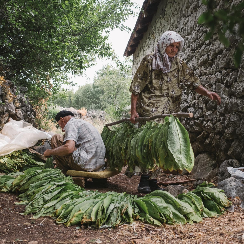 """6Mois  """"Ferme en Bosnie-Herzégovine"""""""