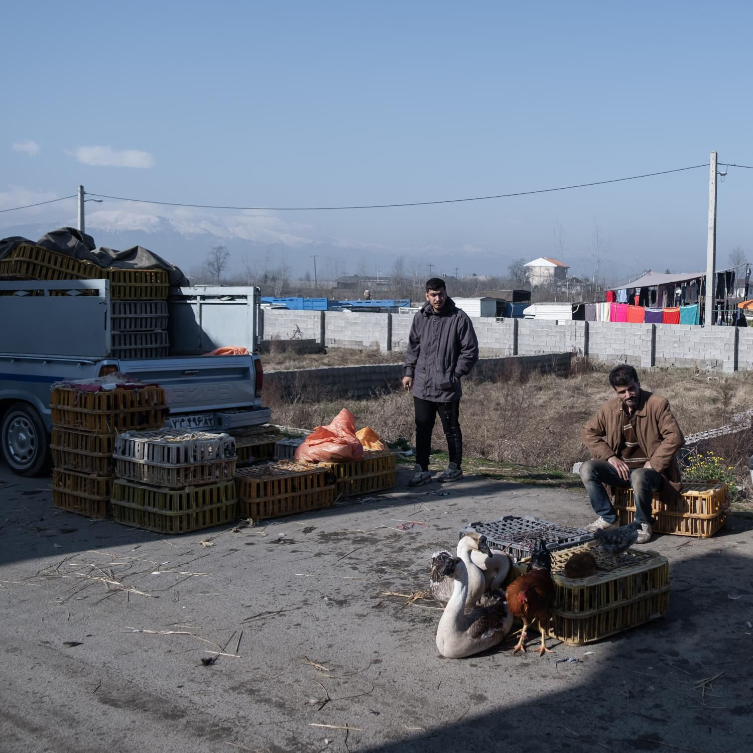 A large number of people and especially Gilan province youth are working in the weekly markets to make a living and earn money. A variety of food, industrial, clothing, leek, nuts, birds, and fish products are supplied in the local markets.