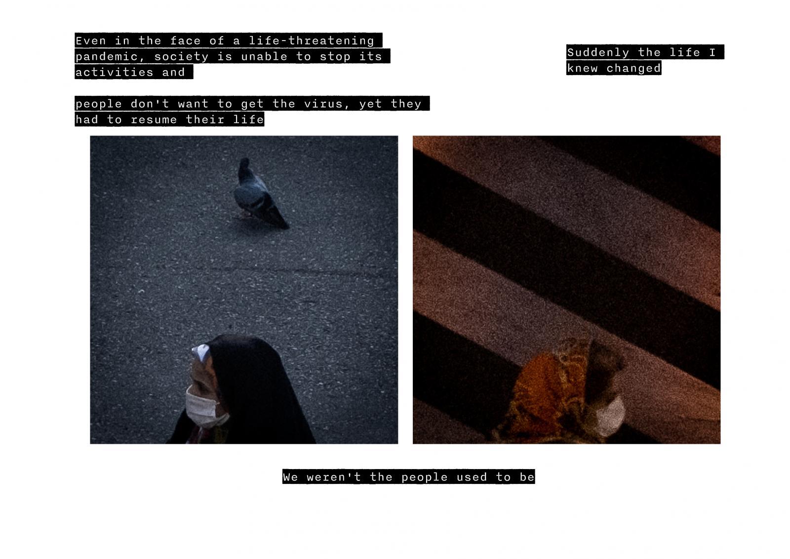 Photography image - Loading B.jpg