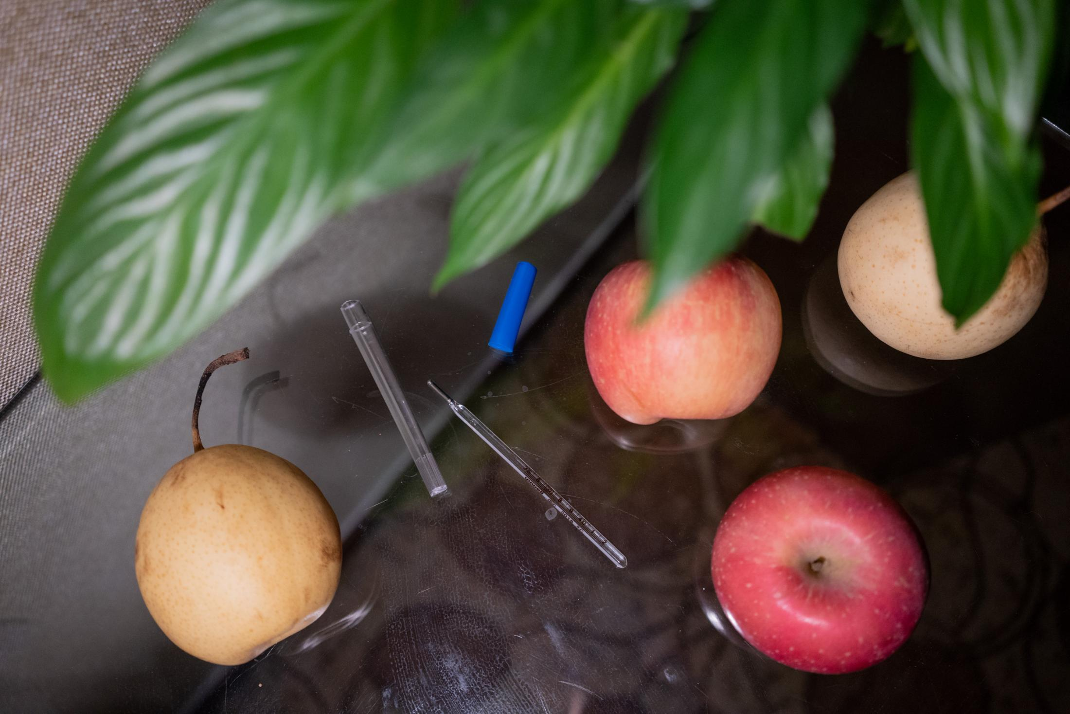A mercury thermometer and some fruits on my desk, which mark the rhythm of the quarantine days: We have to take our temperature with the thermometer and report to the front desk everyday at 9 AM and 4 PM. We are given a fruit, usually an apple or a pear, at every meal.