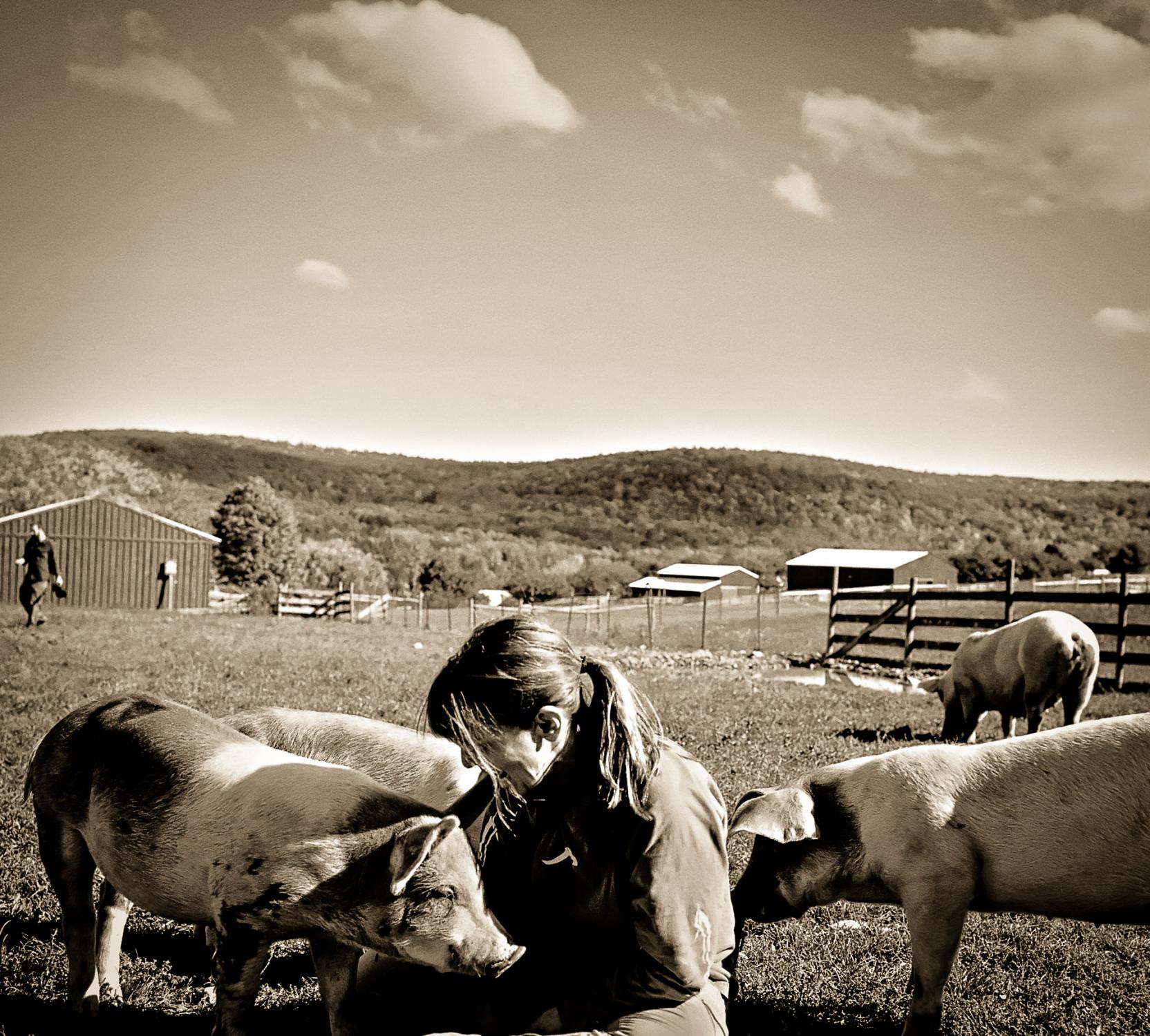 Susie Coston, former shelter director at Farm Sanctuary in Watkins Glen, New York