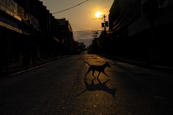 Life in Times of COVID19 (El Salvador)