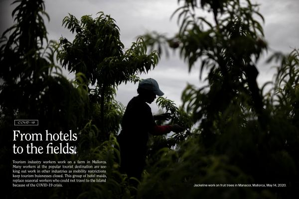 From Hotels to the fields (COVID-19)