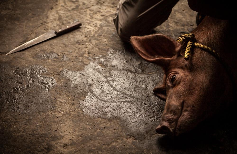 Art and Documentary Photography - Loading BarrioTriste-arrejuan-16.jpg