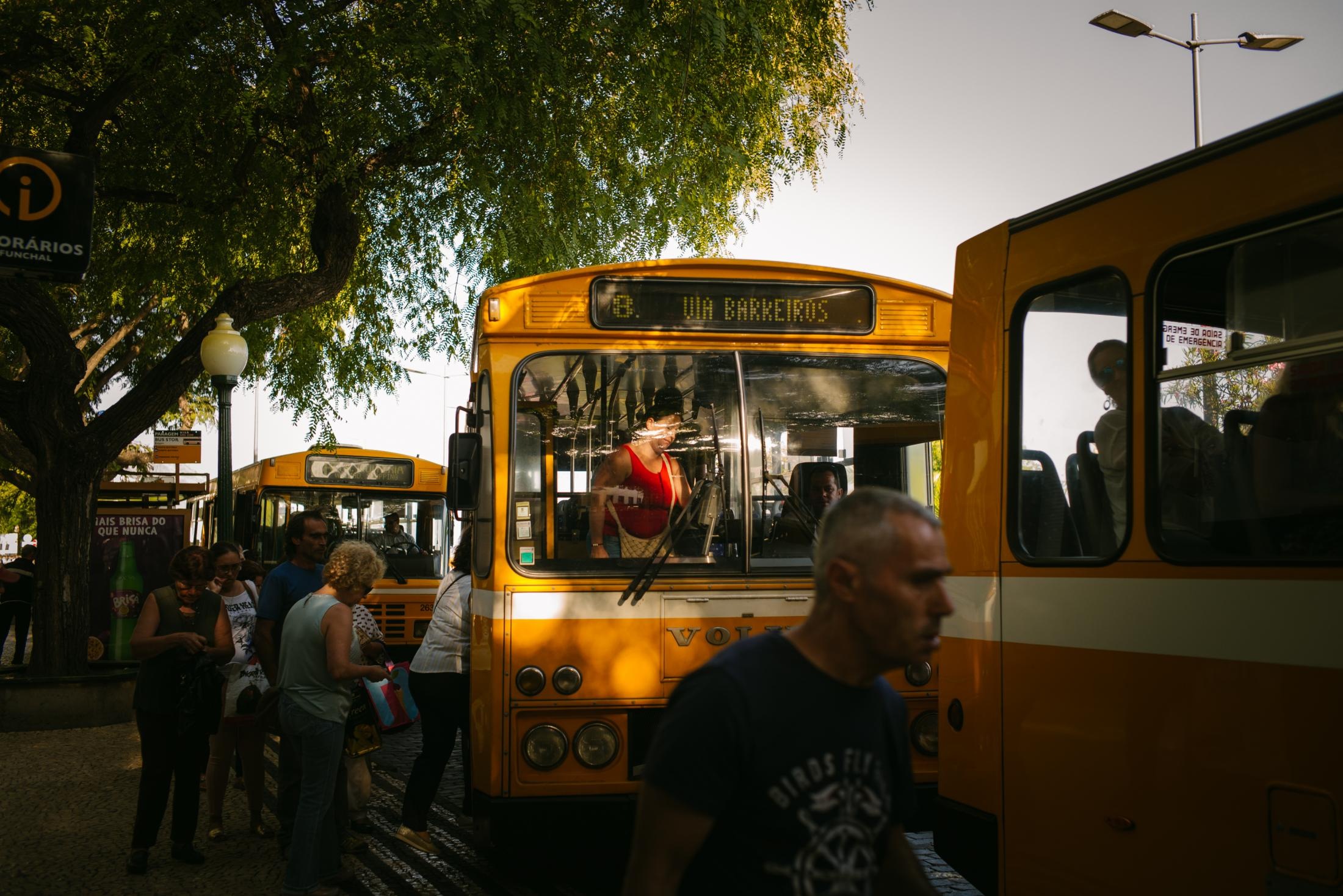 People are seen taking the bus in one of the main avenue in Funchal, the capital city of Madeira Island in Portugal. Camacha, Madeira, Portugal. 14th August 2018.