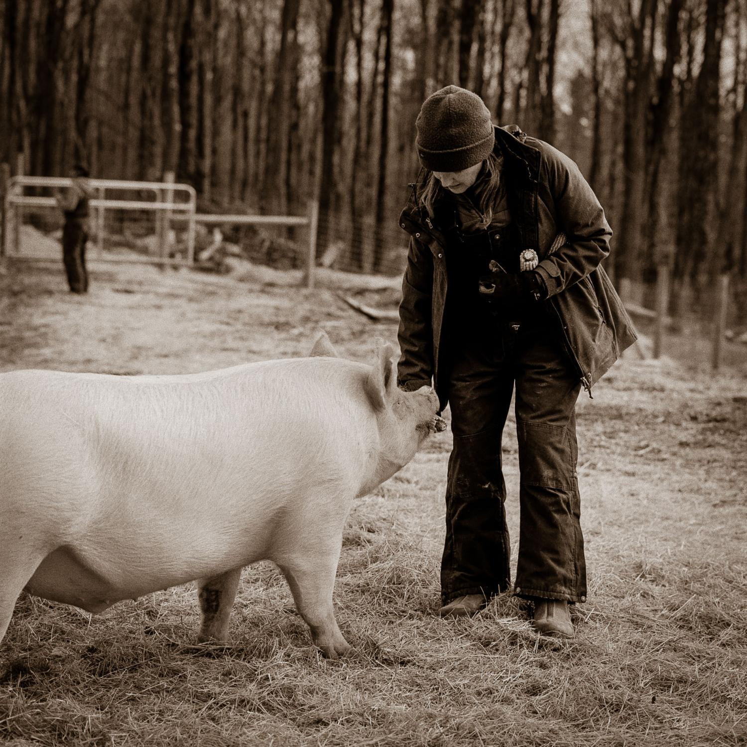 Lynn Printy, co-founder with her husband Oscar of JP Farm Animal Sanctuary in Connecticut