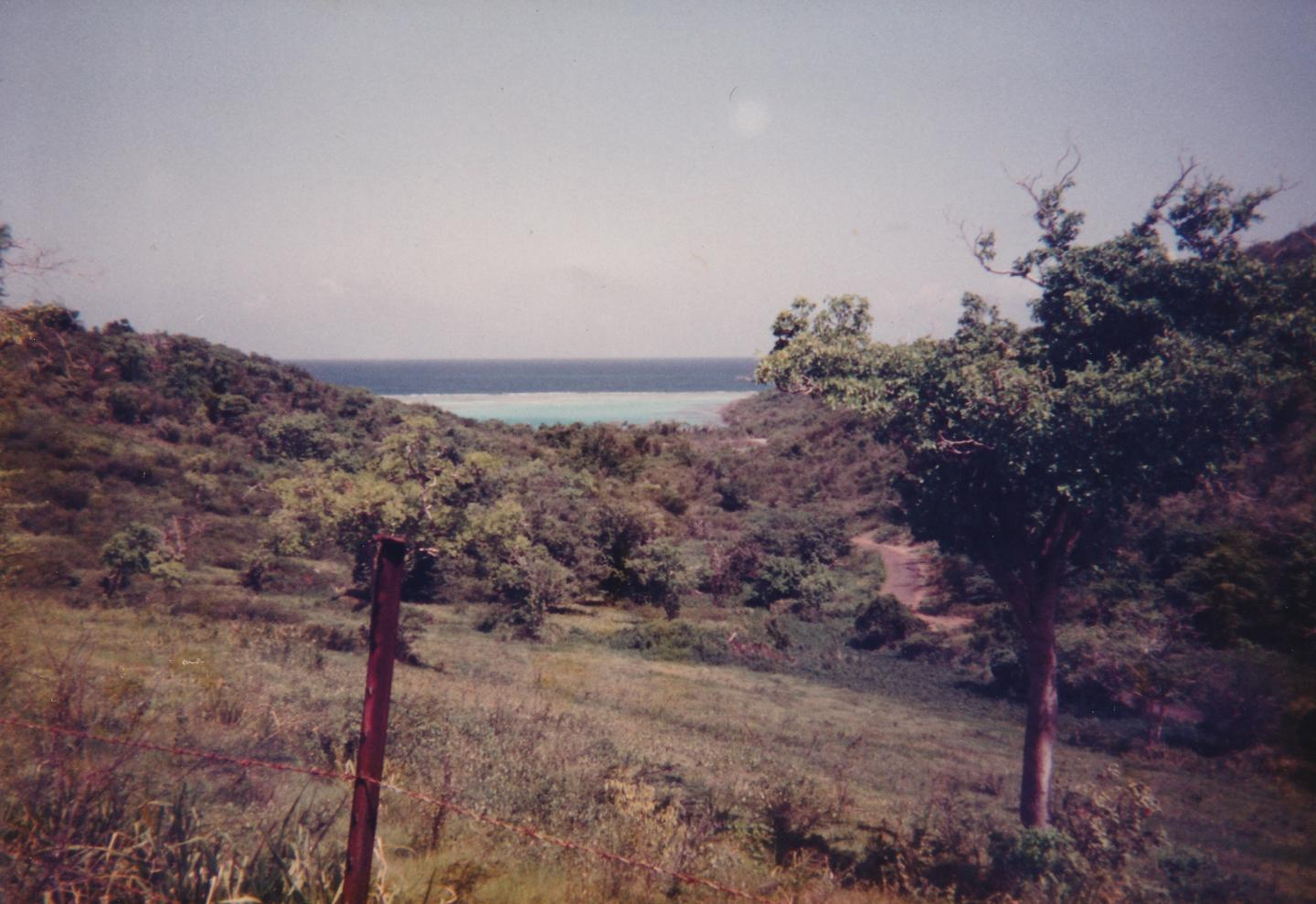 Landscapes my father and I used to visit.