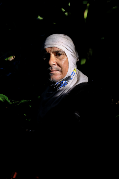 """Papo"" is a coffee picker in Adjuntas, 2018."
