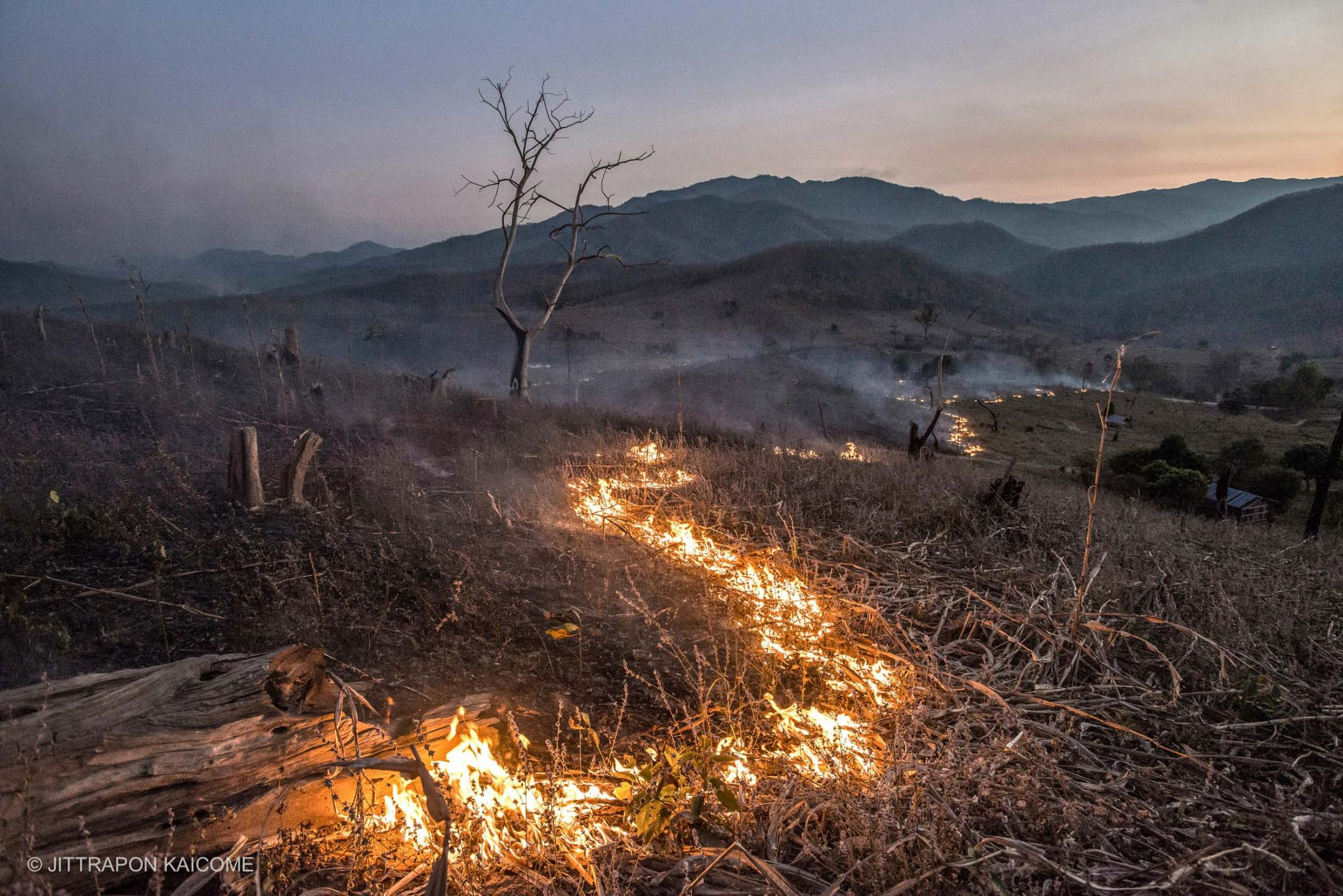 "Slow-burning wildfire scorches thousands of acres in Mae Chaem District, Chiang Mai, Thailand. The areas burned by wildfires each year appeared to start after crop harvesting. Stubble burning is a major reason for heavy smog and air pollution. Forests are considered to be vital for human life due to their provisions of a diverse range of resources. They are able to store carbon and produce oxygen which is necessary to the existence of life on the planet. The extensive destruction of forests turns the land into barren areas that can be described as ""bald mountains"". The deforestation is an extraordinary contributor to climate change. Chiang Mai, Thailand."