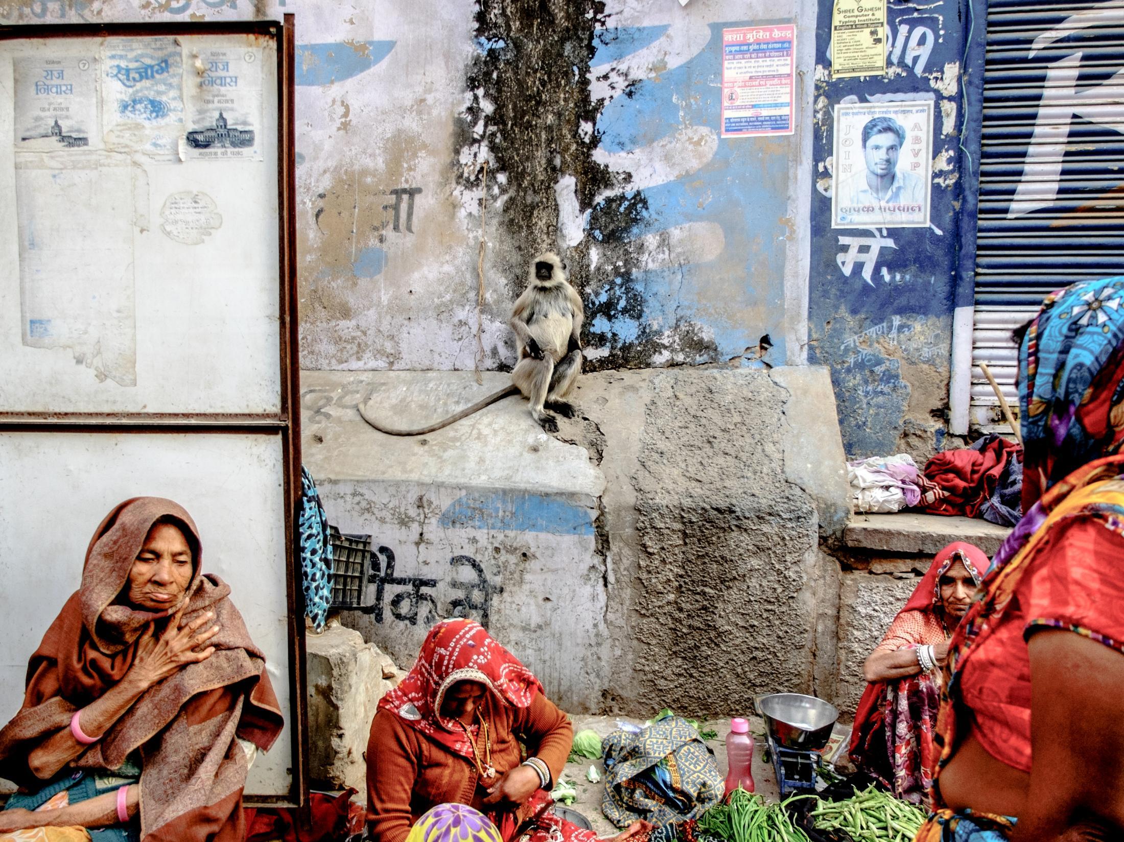 Pushkar, India 2017