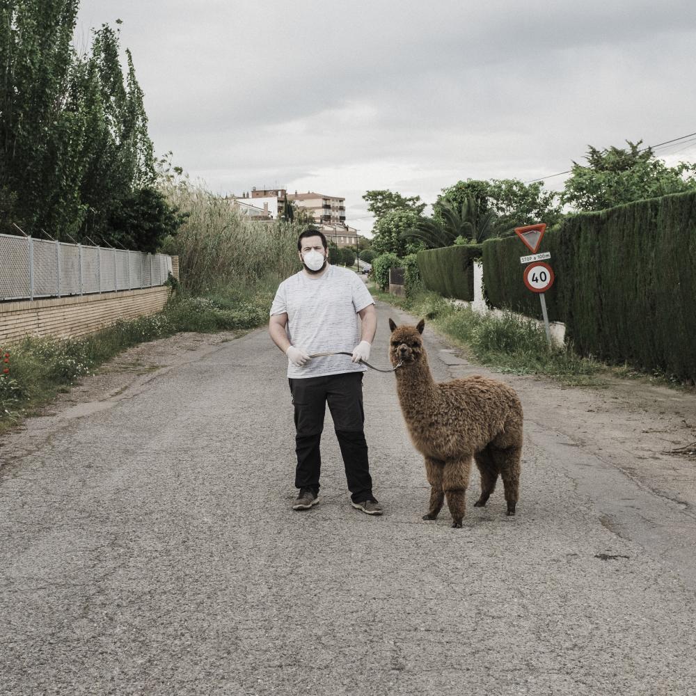 """Andoni Lubaki / """"Bestiario distópico"""" es un proyecto en el que se han retratado animales exóticos siendo paseados por sus dueños en las inmediaciones de sus hogares durante el confinamiento por la pandemia del COVID  ----------------------------------------------------------  """"Dystopian Bestiary"""" is a project in which exotic animals have been portrayed being walked by their owners in the vicinity of their homes during the confinement of the COVID pandemic."""