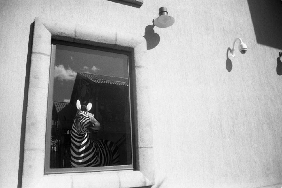 Art and Documentary Photography - Loading ZAL_C019.jpg