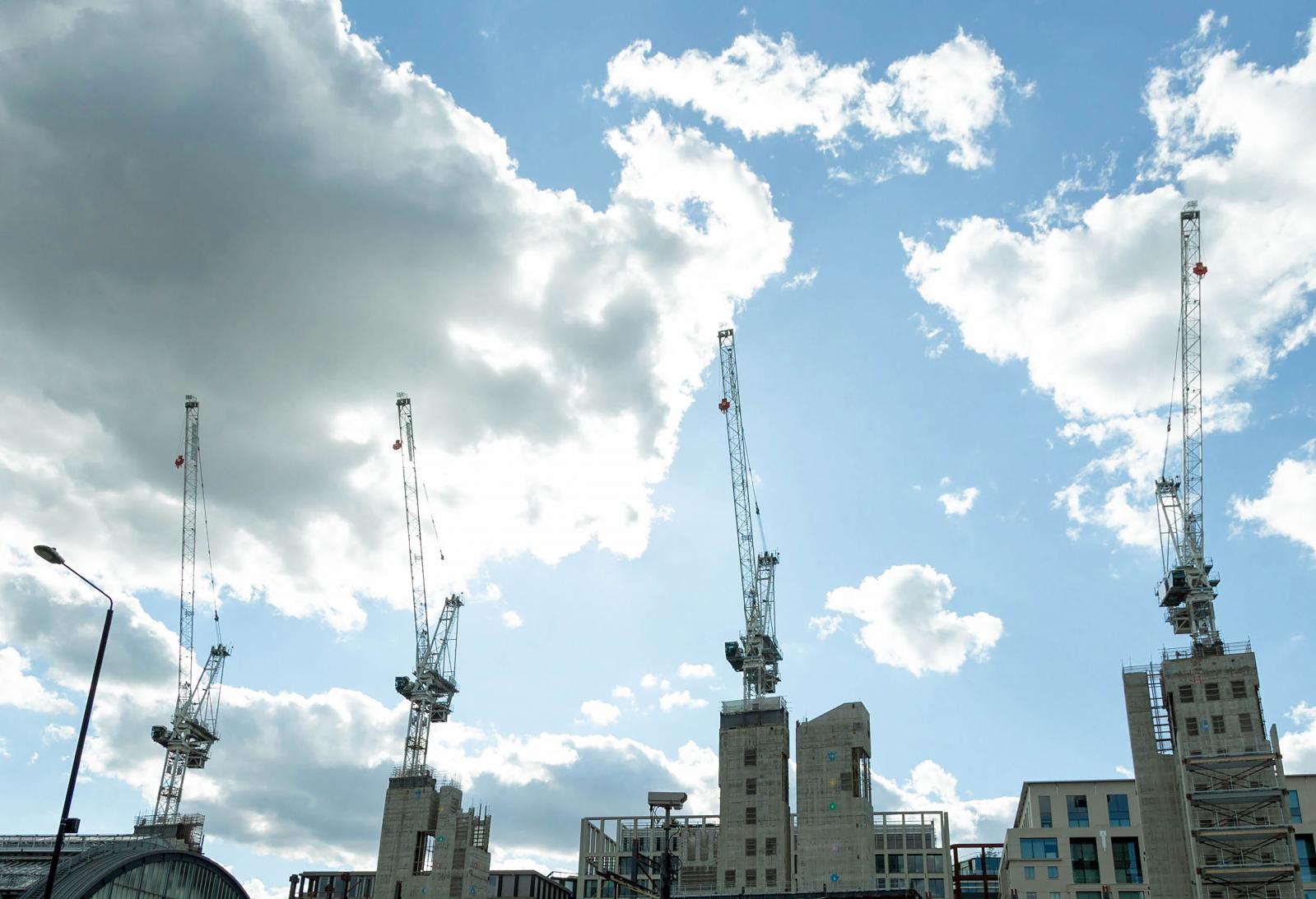 Photography image - Loading Cranes.jpg