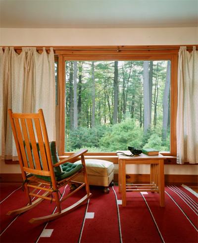Domesticated Interiors
