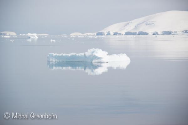 Dreaming Antarctica