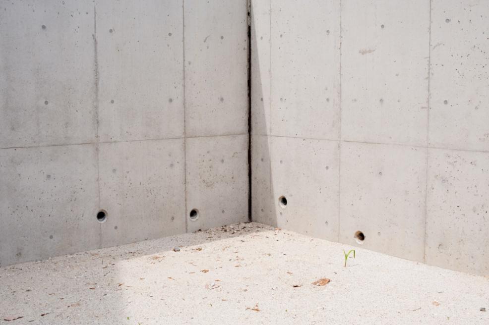 Art and Documentary Photography - Loading celada_iwish_0013.jpg