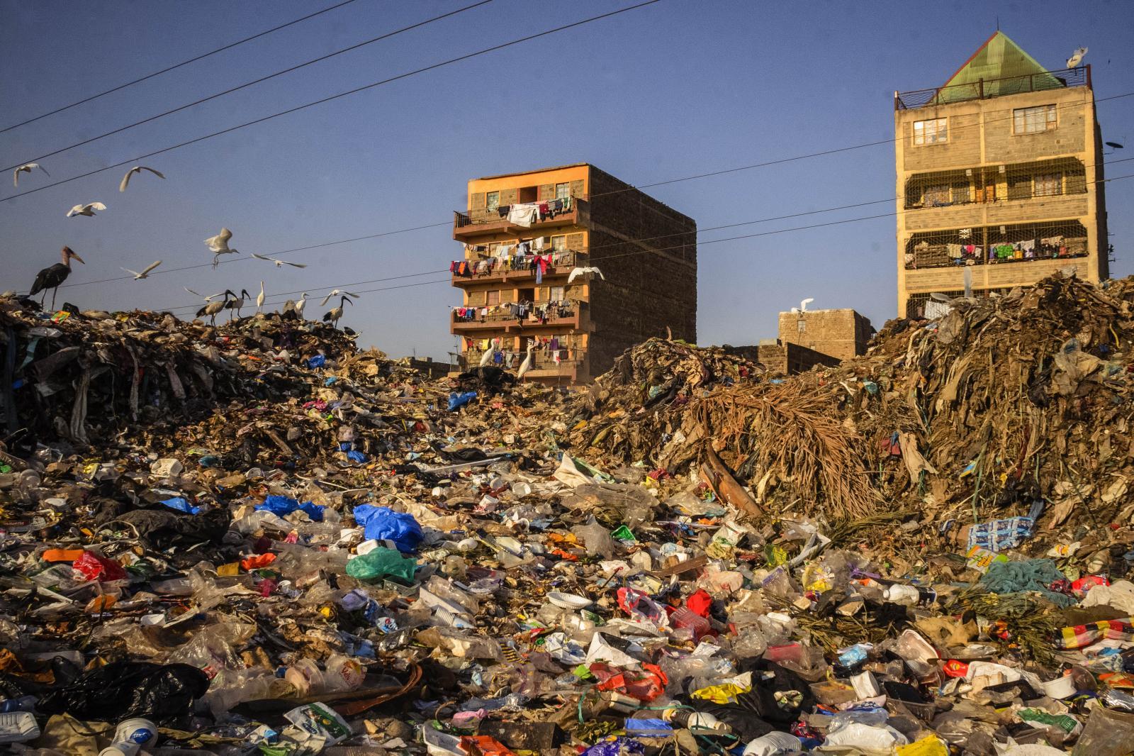 Birds scavenge the waste at Dandora Landfill, Nairobi Kenya's landfill on September 19, 2019.