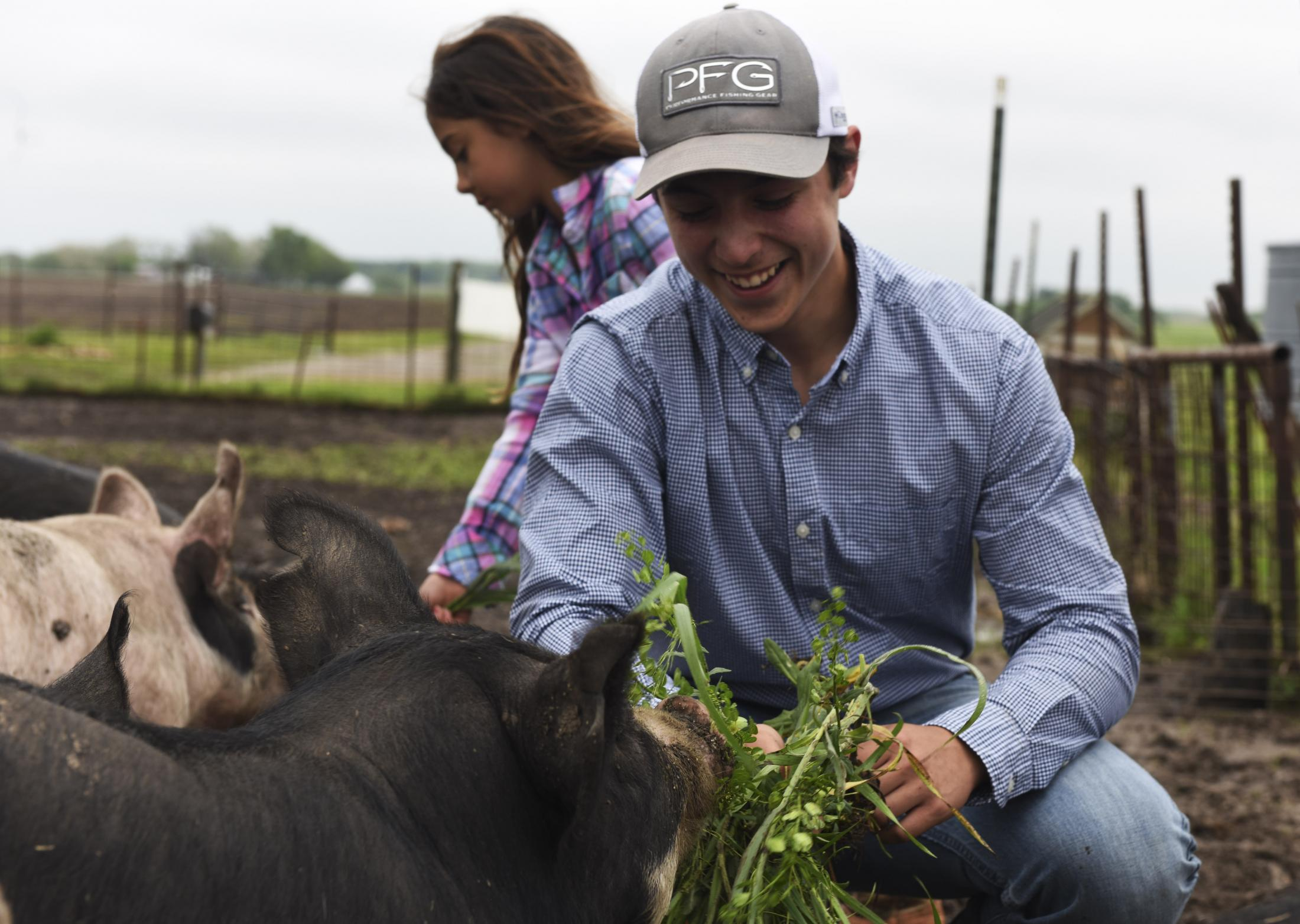 "Cody Williams, 15, feeds grass to some hogs on Tuesday, May 19, 2020, at the community hog farm in Clarksburg, Missouri. While Cody and his family collectively share responsibilities of the land with community members, two other local absentee landowners have sold out their land to CAFOs that could pollute the rest of the community's water supply and livestock. The two landowners are the uncles to Fred Williams, Cody's father. ""It is a real shame that they care more about money than they do about the welfare of the people closest to us,"" said Susan Williams, 67, mother of Fred Williams."