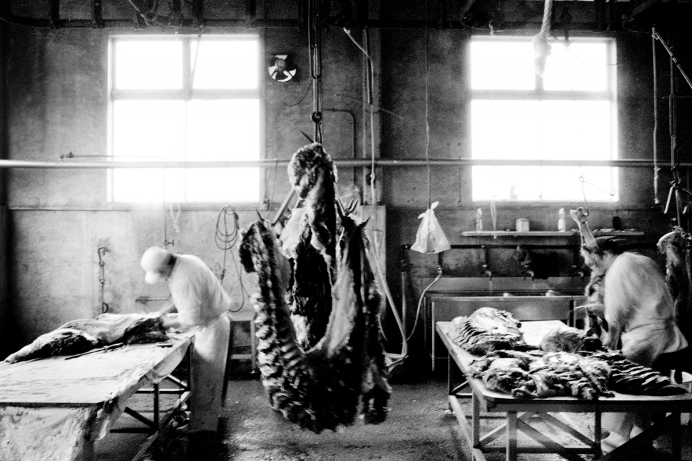 Art and Documentary Photography - Loading 27.jpg