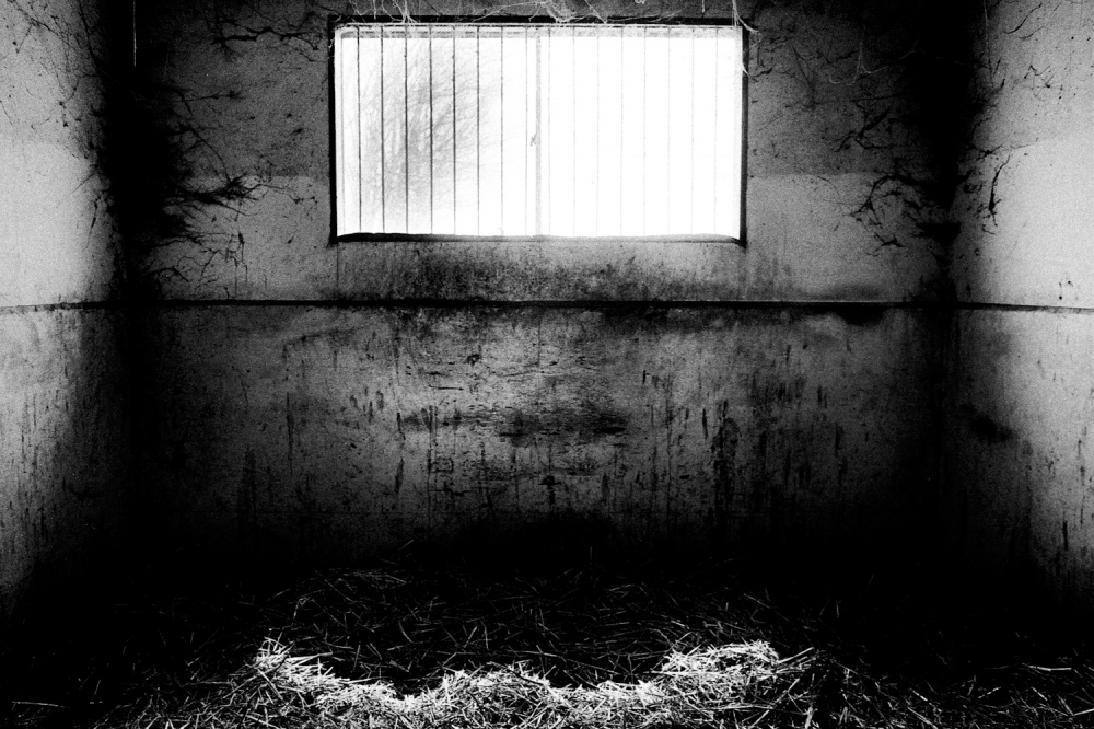 Art and Documentary Photography - Loading 30.jpg