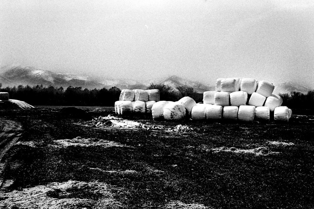 Art and Documentary Photography - Loading 33.jpg