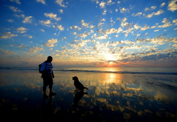 St. Augustine, Florida, USA Rick Grassie, an Elkton resident, gets ready to throw a ball to his dog, Brooks, on St. Augustine Beach, just north of the pier, early Wednesday morning, July 30, 2014.
